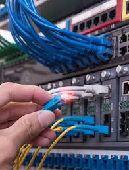 مهندس شبكات -حاسب الي-صيانه..