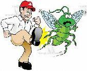 مؤسسه اليسر لمكافحه الحشرات بالرياض