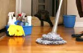 شركة تنظيف ومكافحه حشرات  بجيزان