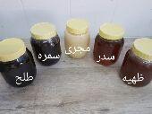 للعسل الجبلي سدر طلحه شوكه وظهيه