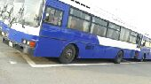buses for sell and rent