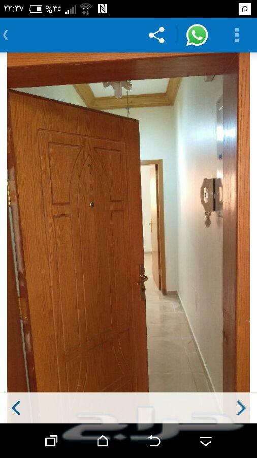 »  شقة ثلاثة غرف في ج20 للايجار