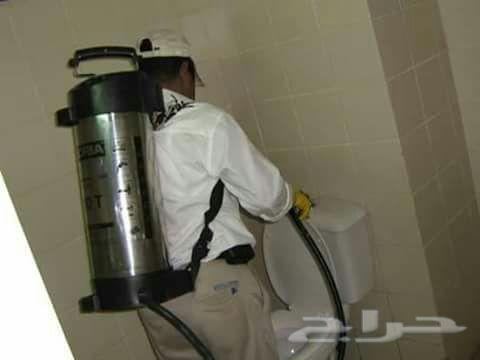 شركة تنظيف شقق خزانات شركةمكافحة حشرات بجده