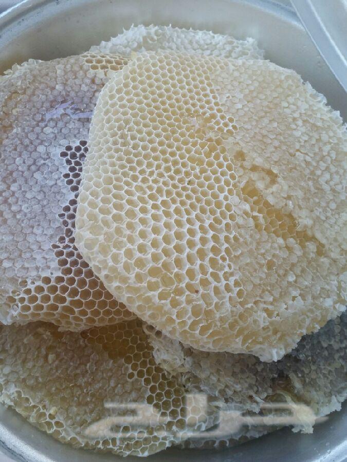 عسل سدر فاخر  بغذا الملكات ومنتجات النحل الحر
